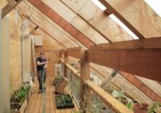 The Radix Center, ecological sustainability in the heart of Albany, NY