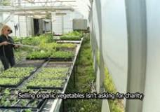 Les Jardins de Marie-Bio, a small-scale, organic farm incubator