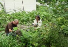 Designing your garden and your life with permaculture